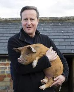 Cameron and pig