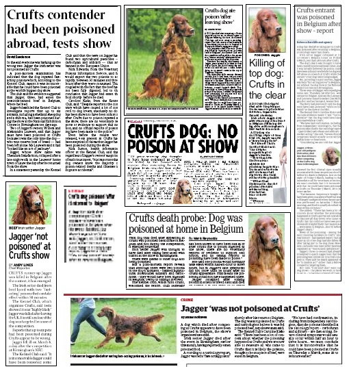 Crufts followup